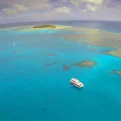 Lady Musgrave Island Day Tour