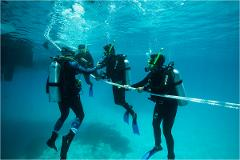 Open Water Scuba Diving Course (eLearning)