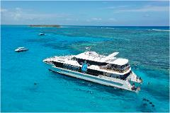 Lady Musgrave Island Day Tour Experience