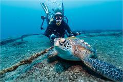 ex-HMAS Tobruk Double Wreck Dive Experience