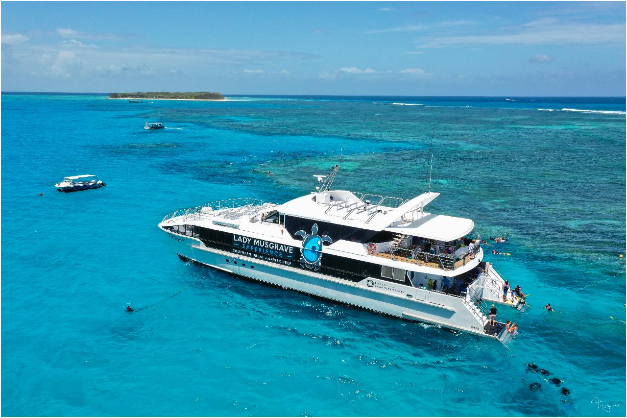 Lady Musgrave Island Full Day Tour