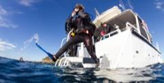 CERTIFIED DIVERS - COOK ISLAND DOUBLE DIVE SPECIAL