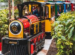 Dusty's Safari Train Ride ($) - Location: Meet @ Train Station