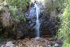 Waterfall Gully Hike