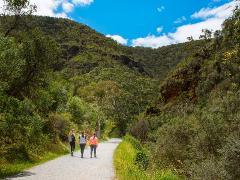Morialta Wilderness and Wildlife Hike