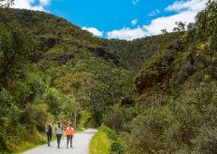 Bushwalk, Wine and Barbecue Eco tour