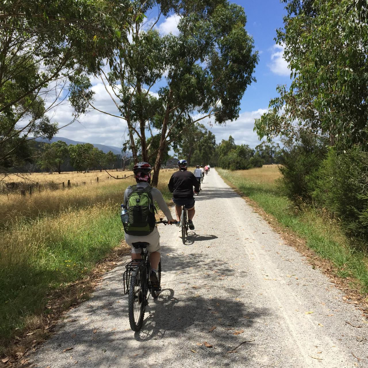 Guided Gourmet Food and Wine Cycle Tour Yarra Valley