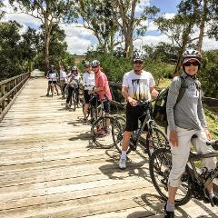 Guided One Day Food and Wine Cycle Tour Yarra Valley