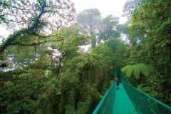 San José to Arenal Day Tour: Hanging Bridges + Lunch + Hot Springs + Dinner