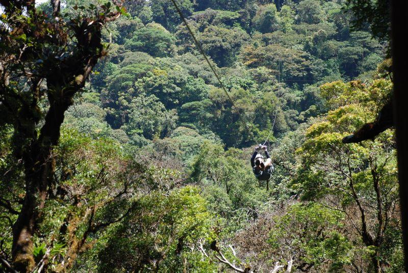 Monteverde COMBO tour Selvatura Ziplines + Self-guided Hanging Bridges & Monteverde COMBO tour: Selvatura Ziplines + Self-guided Hanging ...