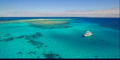 Full Day Snorkel the Outer Great Barrier Reef
