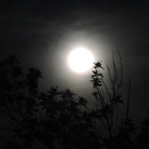 Marvellous Moon/ Dark Night Stargazing