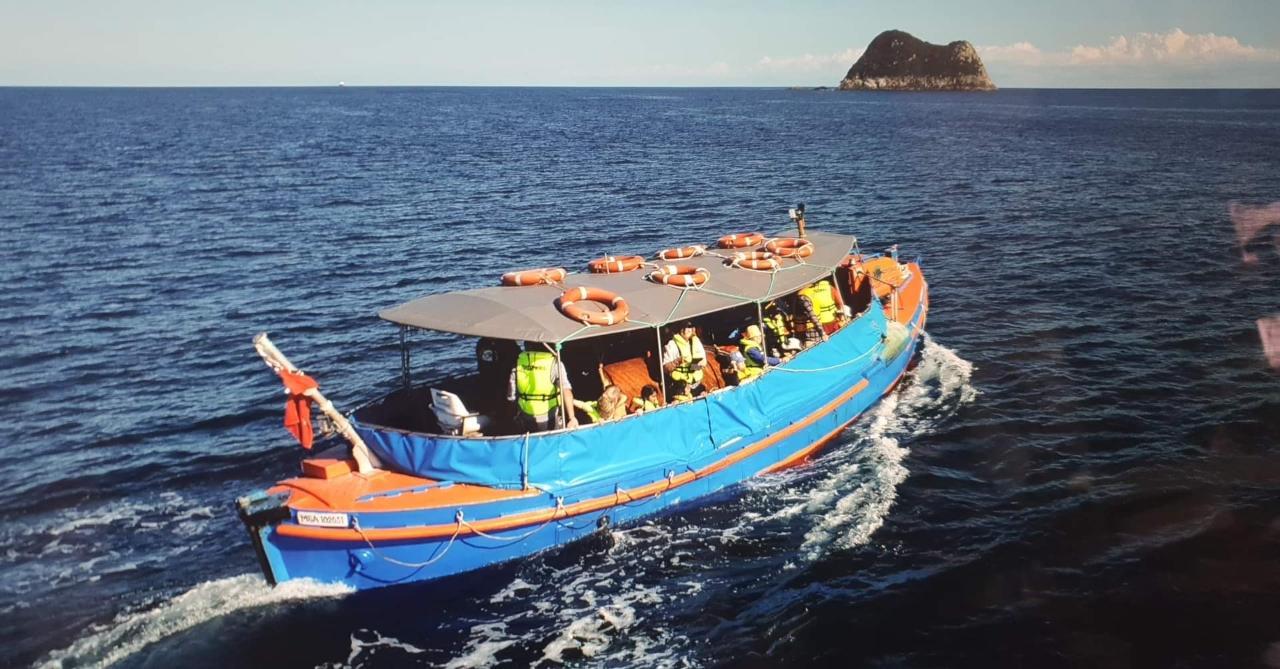 Wildlife Boat Tour