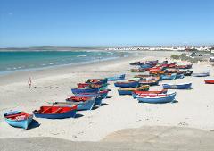 Cape West Coast Private Day Tour.