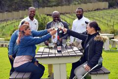 Best Of Cape Town Highlights Private Tours In 2 Days