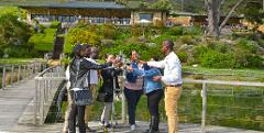 Best Of The Cape Private Tour Including Penguins at Boulders