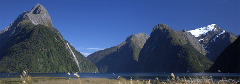 Milford Sound Discovery