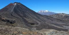 Half Day Volcanic Explorer Guided Walk (including Lord of the Rings Highlights)