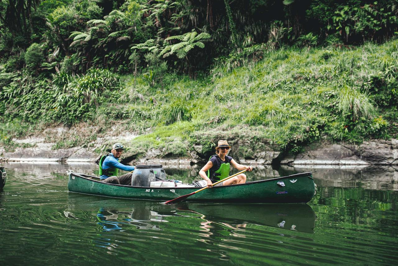 1 Day Whanganui River Guided Canoe - SUMMER SPECIAL