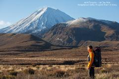 Half Day Volcanic Explorer Guided Walk