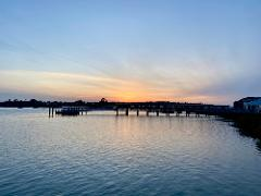 Hobsonville Point Cruise