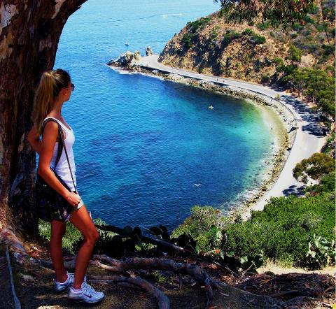 Lover's Cove Snorkel Tour