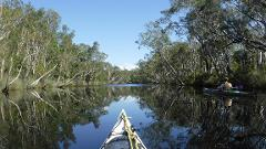 4 Day Truly Sustainable Noosa Everglades Self Guided Kayak Adventure
