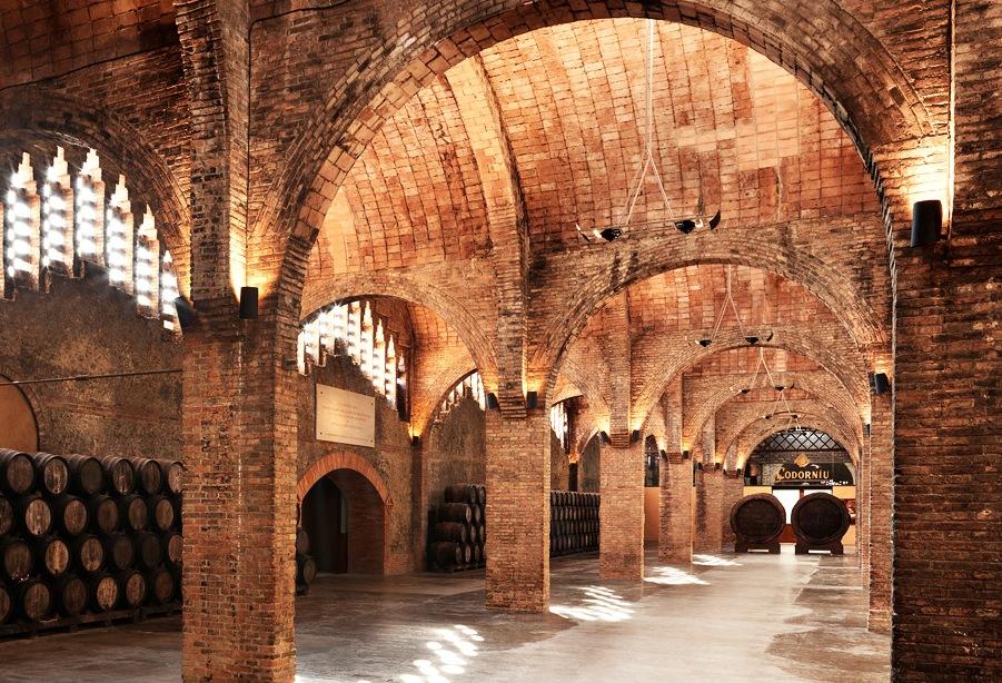 Montserrat & Codorníu Wine Cellars Tour