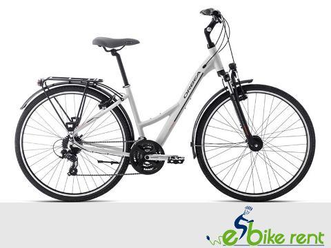 Trekking Bike -  M L XL size