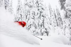 3 DAY CATSKIING TOUR - PEAK 2020