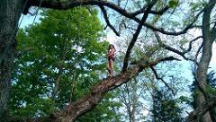 Tree Climbing + Forest Bathing in Kentucky