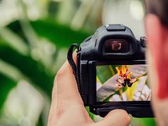 Charlotte Photography Workshop + Hiking
