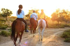 Guided Horse Trail Ride in Charlotte NC
