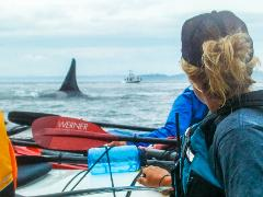 Women's San Juan Islands Sea Kayaking and Camping Trip