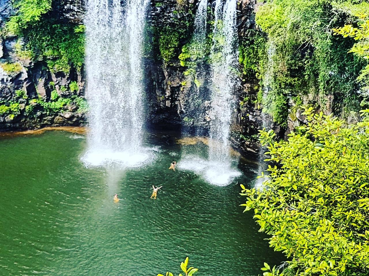 Rainforest & Waterfall Experience