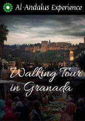 Discover Granada & Albayzín walking Tour - GUIDED TOUR
