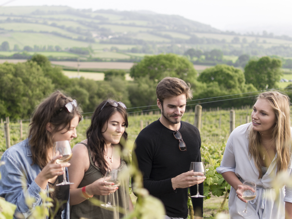 Yarra Valley Private Tour: Visit your choice of Winery, Beer/Cider or Distillery