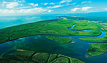 1 Day Daintree Rainforest, Cape Tribulation & 4WD Bloomfield Track Day Tour