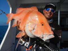 4 day Combo Trip - 2 days reef and 2 days Barra