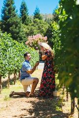 Surprise Proposal & Private Boutique Hunter Valley Winery Tour Half Day - $385 for 2 Guests