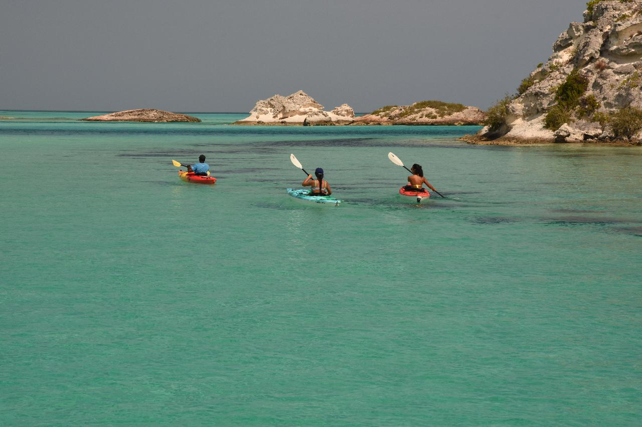 Signature Kayak Eco Tour