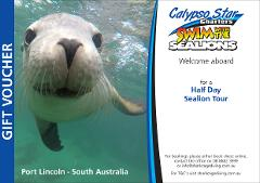 Swim with the Sealions Gift Voucher