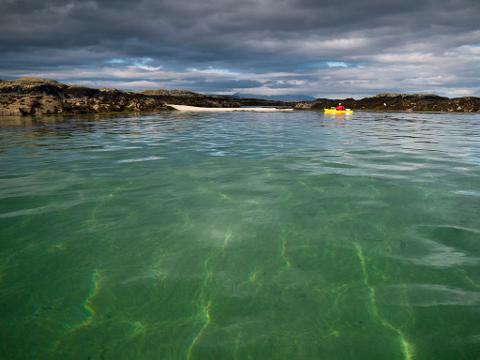 Half Day Sea Kayak Trip