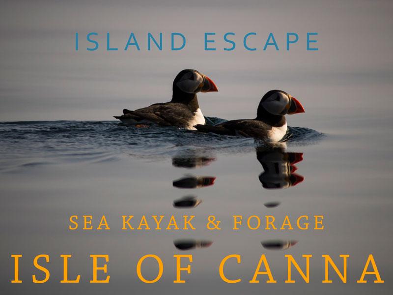 Island escape - Sea kayak & Forage Isle of Canna