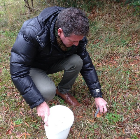 Maxs May Mushroom Meander- Public tour