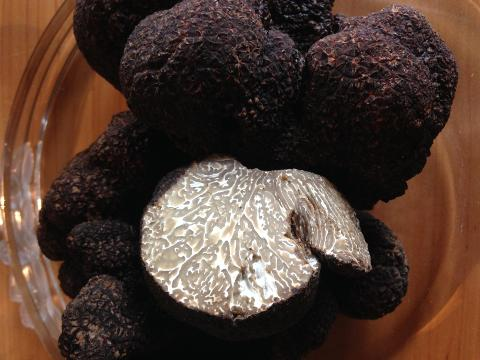 Red Hill Truffle Hunt, 2 course lunch and glass wine