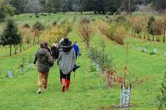 Hunt and Gather at Red Hill Truffles- Public tour