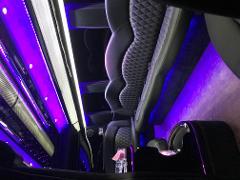 Half Day Private Tour - Limousine Sprinter