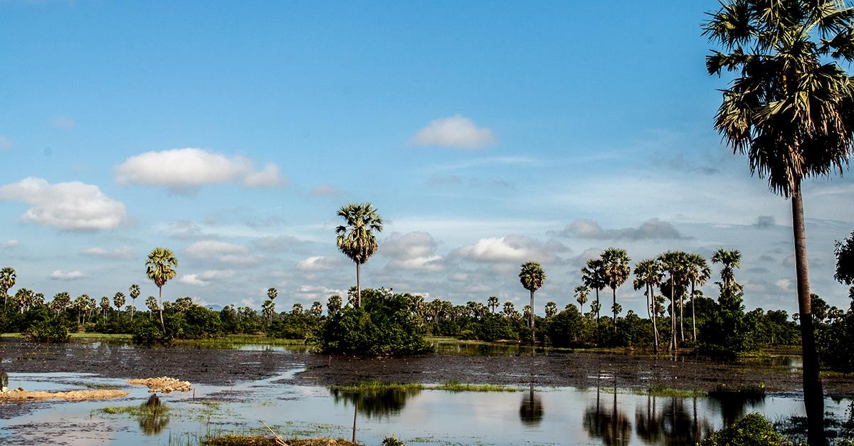 Siem Reap Countryside Ride