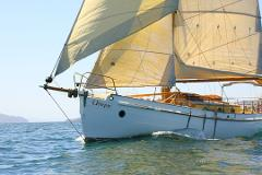 Introduction to sailing / half day sail